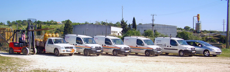 Servilas Car Fleet